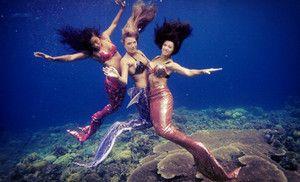Little Mermaid Erg Mooie 5488