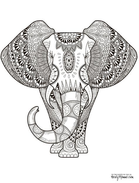 Elephant Abstract Doodle Zentangle Paisley Coloring pages colouring ...