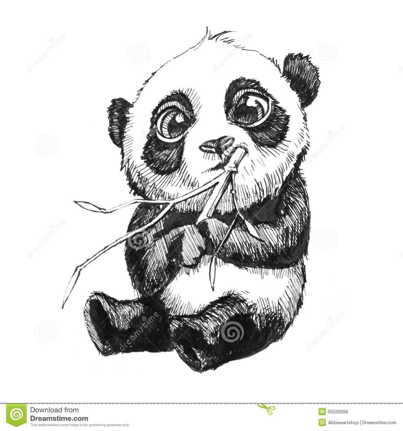 Example Big Puppy Dog Eyes Panda Drawing Panda Art Panda Artwork