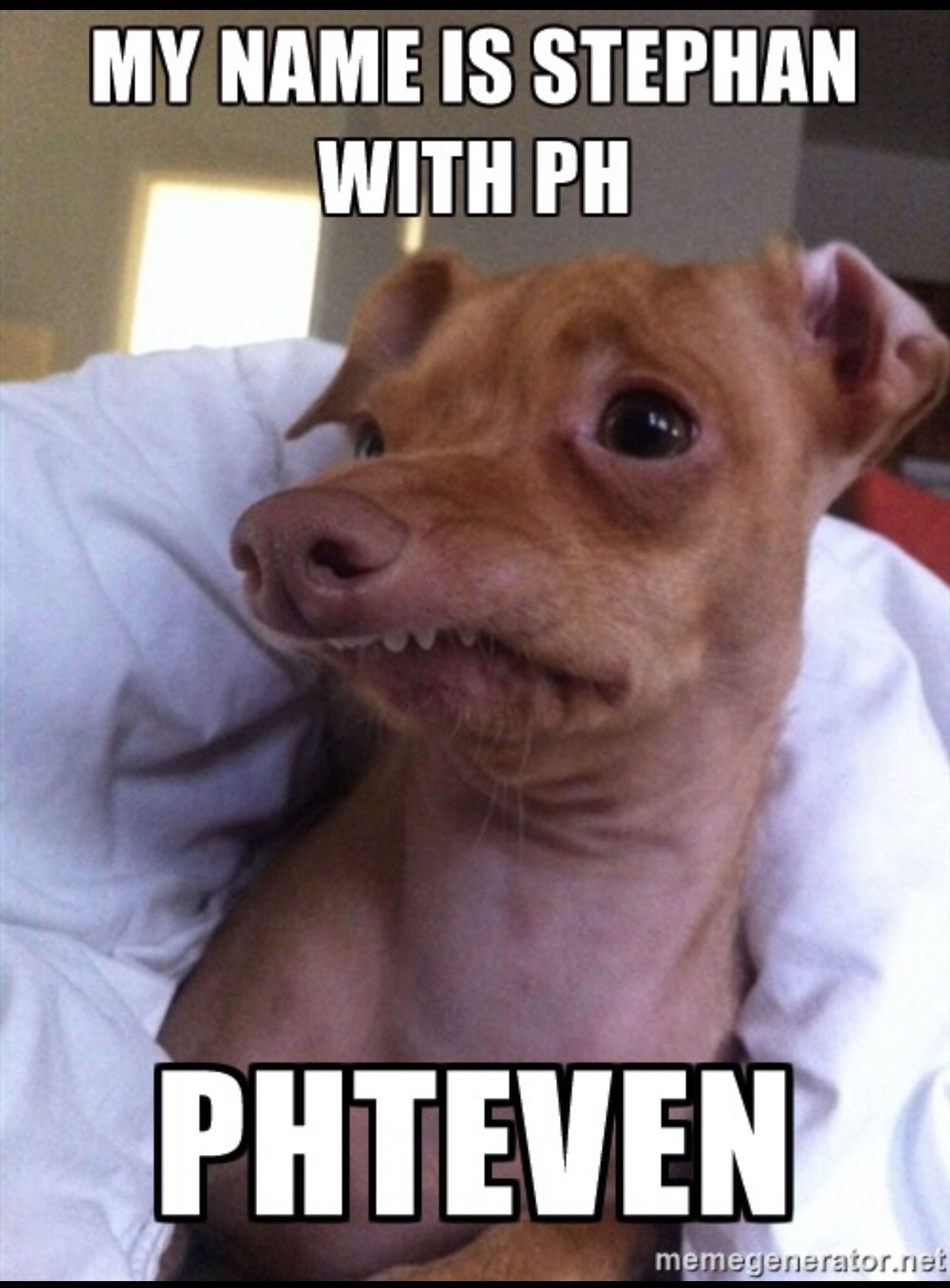 Steven with a PH | Phteven | Pinterest | Tuna melts, Tuna ... - photo#22
