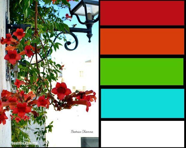 rosso bianco #earth #color #colors #photo #landescape #beautifoul #nature #lovenature #arcobaleno #luci #light #bordo di una foto