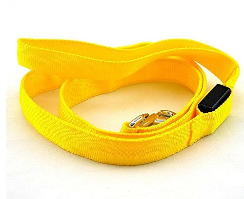 Flashing LED cat Leash 2.5 Cm Wide => Awesome cat product. Click the image : Cat Collar, Harness and Leash