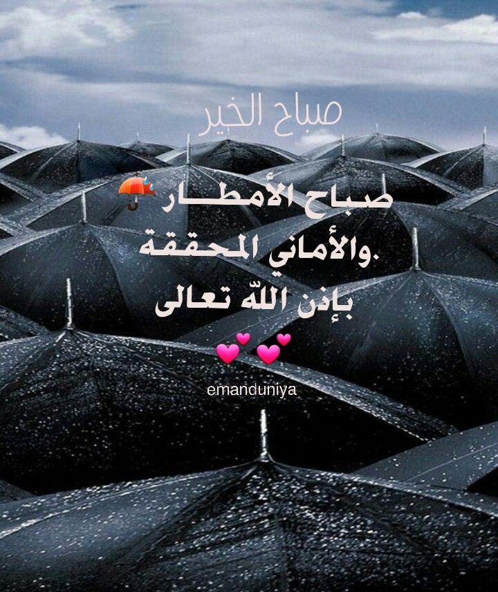 صباح اﻷمطار واﻷماني المحققة بإذن الله تعالى Words Of Wisdom Funny Jokes Holy Quran