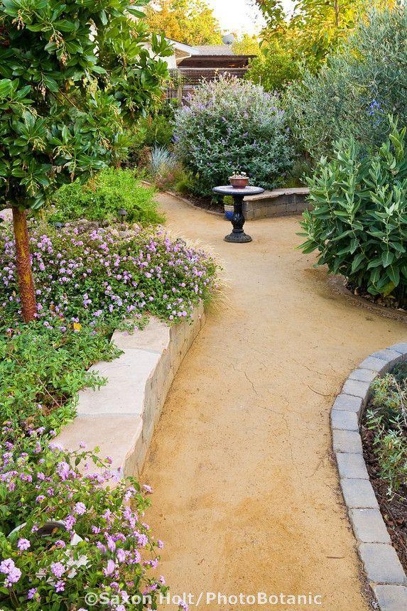 decomposed granite garden - Google Search   Gardening ... on Decomposed Granite Backyard Ideas id=64590
