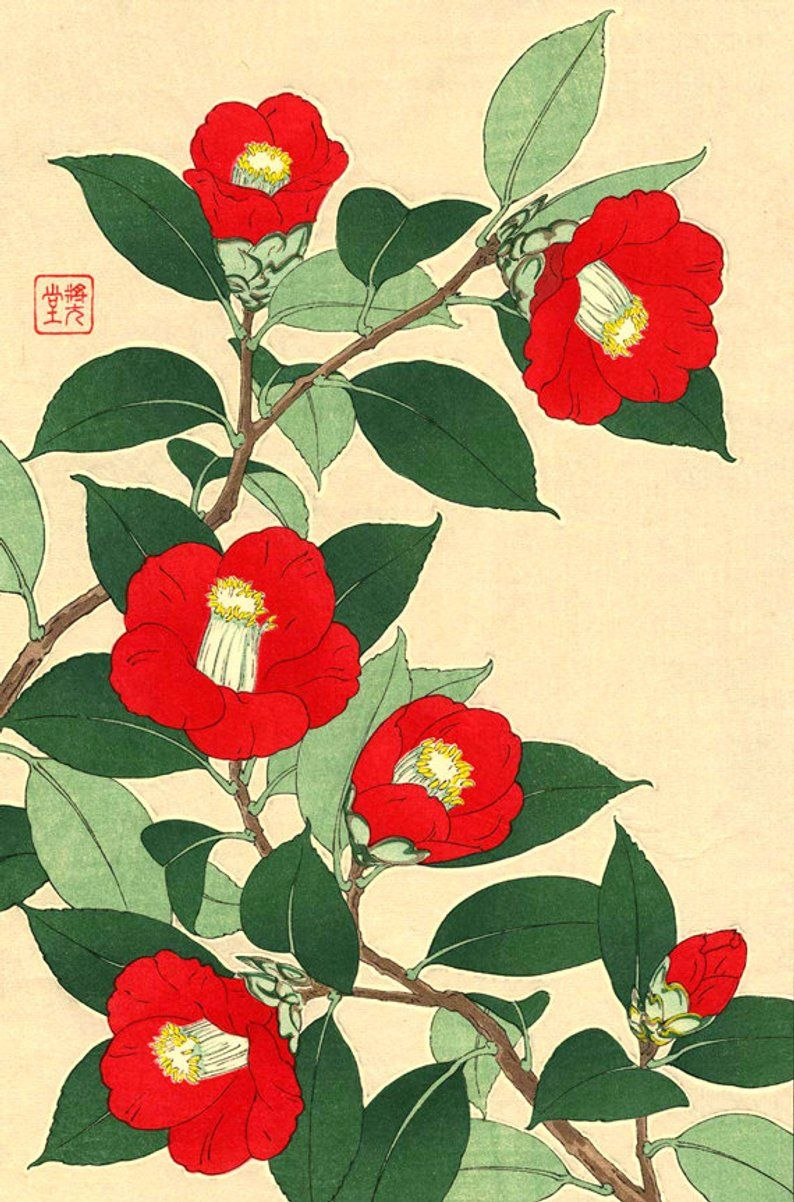 Japanese Flowers Art Prints Posters Japanese Red Camellias Etsy Flower Prints Art Flower Art Botanical Art Prints