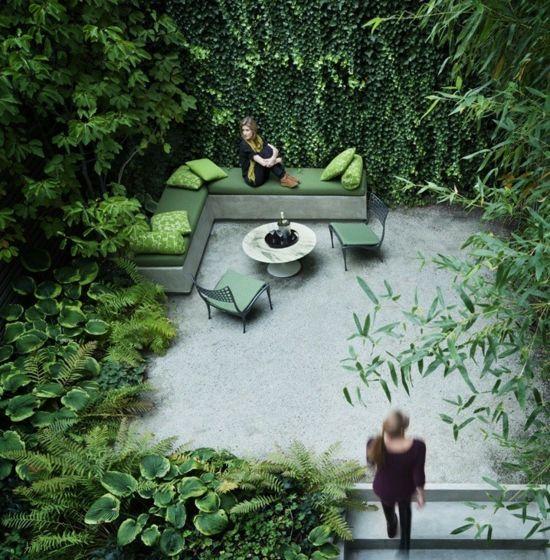 Un Jardin Dans Un Petit Espace Avec Des Plantes Grimpantes