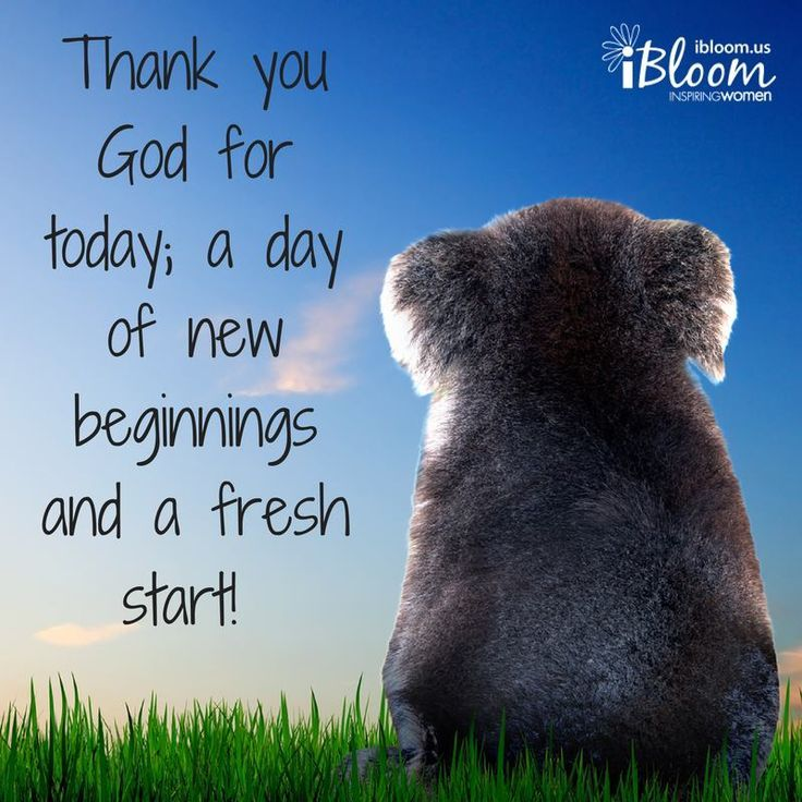 Thankful For A New Day Quotes: Thank You God, Prayers, Gods