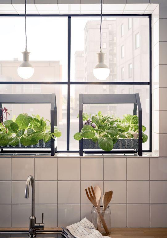 Domowy Ogródek Przez Cały Rok Z Nową Kolekcją Ikea Home