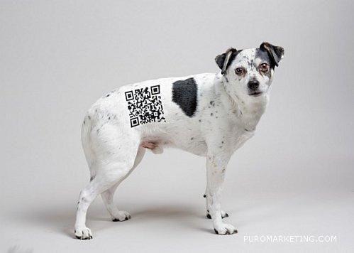 QR Dog, Por si se pierden, según @warkoholic