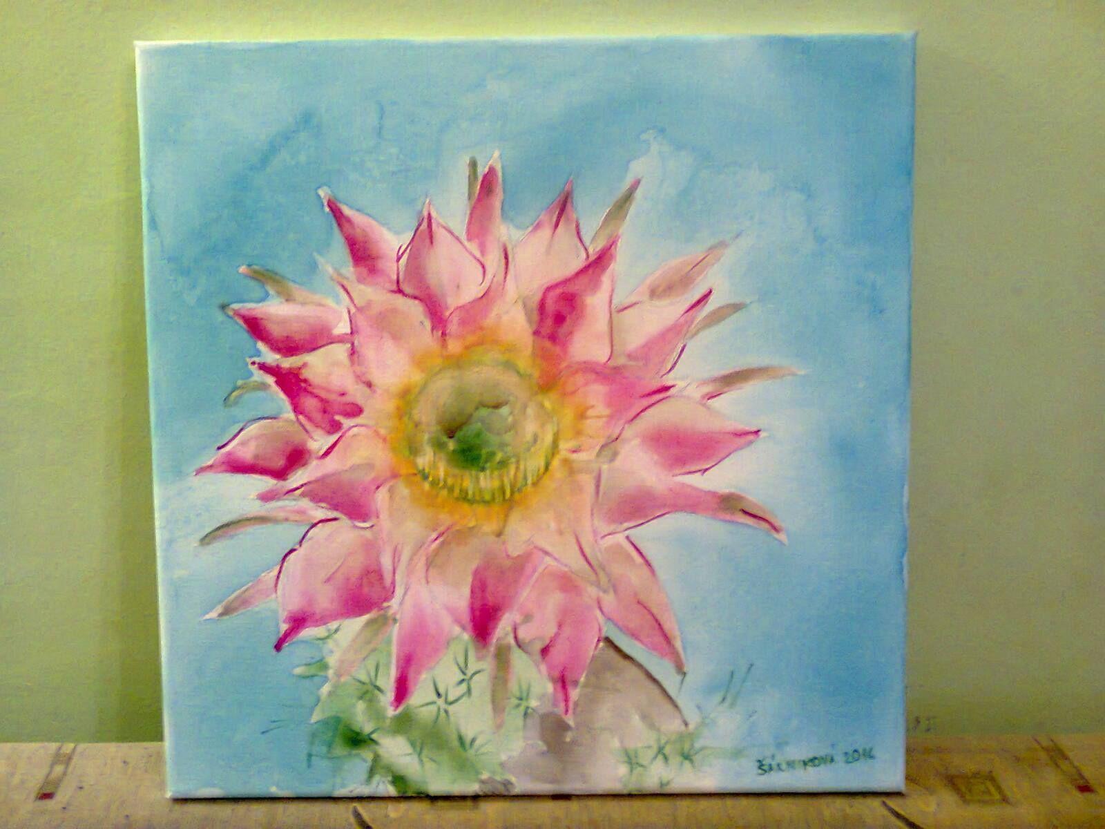 Kvet kaktusu