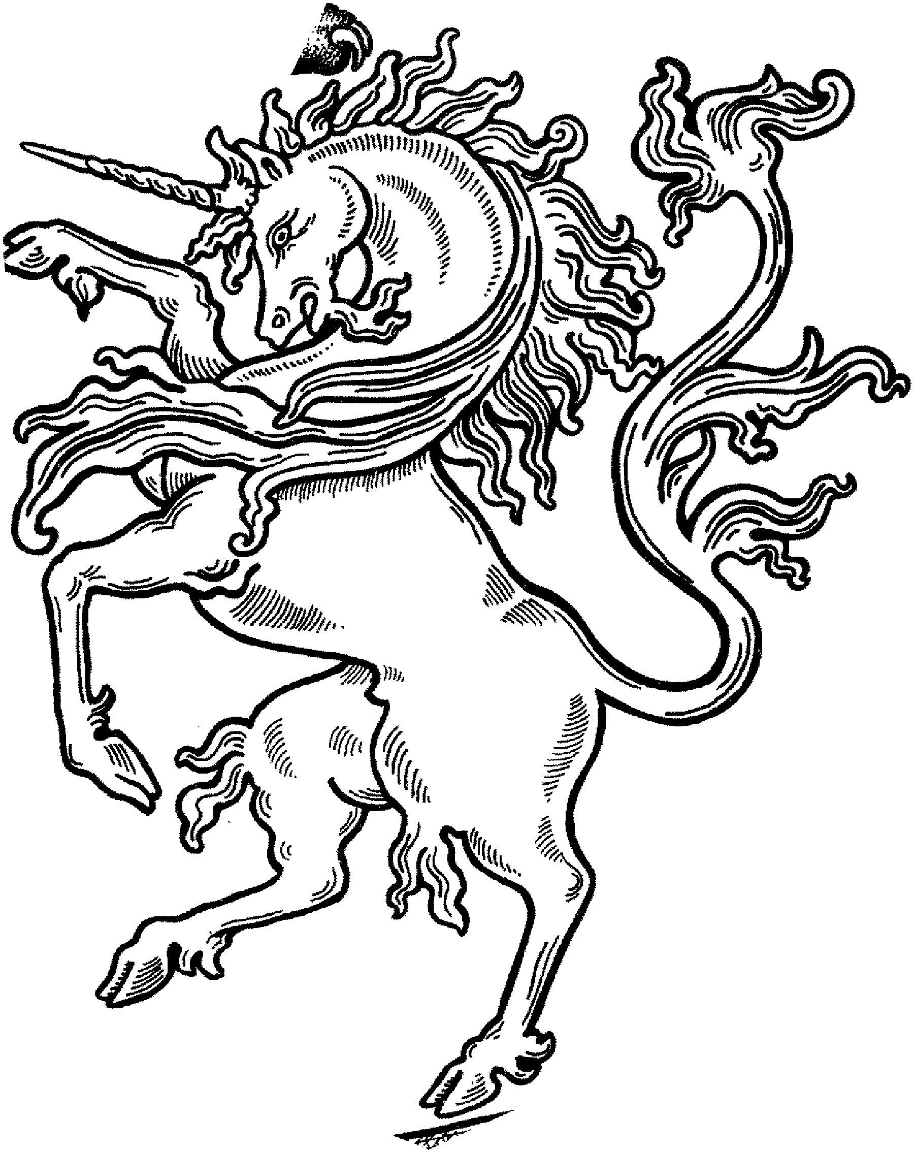Printable Cartoon Unicorn Coloring Pages Free Adult Mommy U
