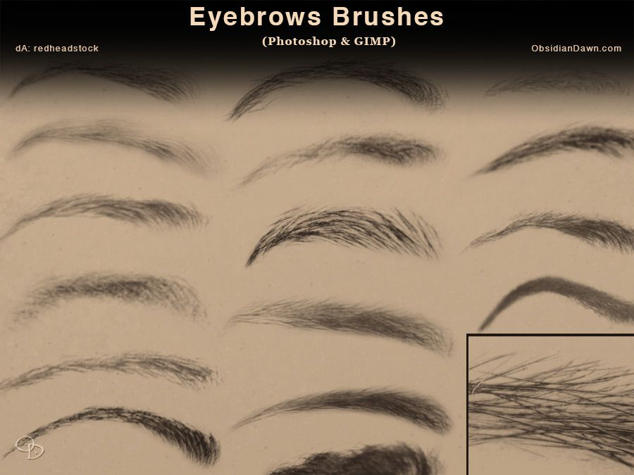 Eyebrows Photoshop And Gimp Brushes By Redheadstock On Deviantart