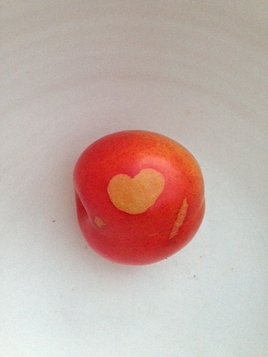 plum with a heart tattoo (perfection of imperfection)