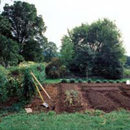 8 steps for making better garden soil organic gardening for Organic soil uk