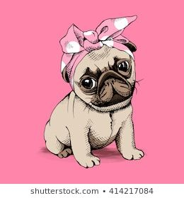 Puppy Pug in a Headband on pink background. Vector