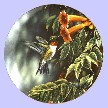 Four Seasons: Summer Hummingbird - Hadley House - Artist: Rosemary Millette