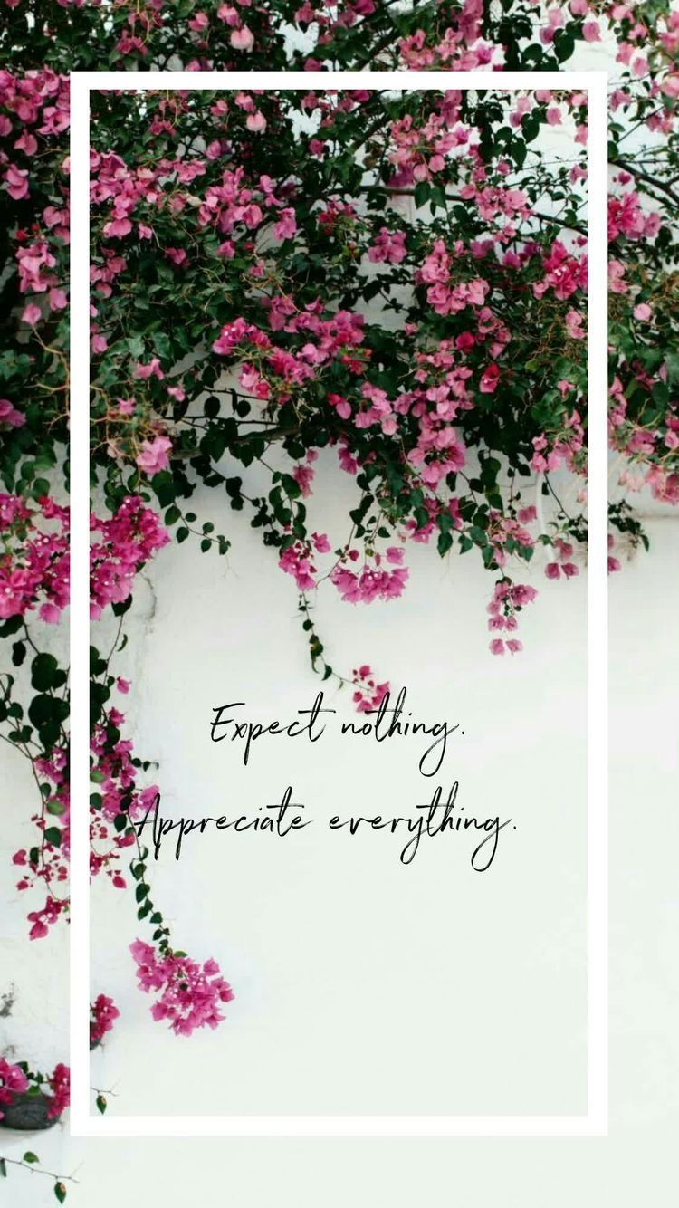 Best 11 iPhone Wallpaper Quotes from Uploaded by user, In a world that expects everything and appreciates nothing. Be different ~ Expect nothing from others and be grateful for all you have. Inspirational quotes l inspiring quotes l life quotes
