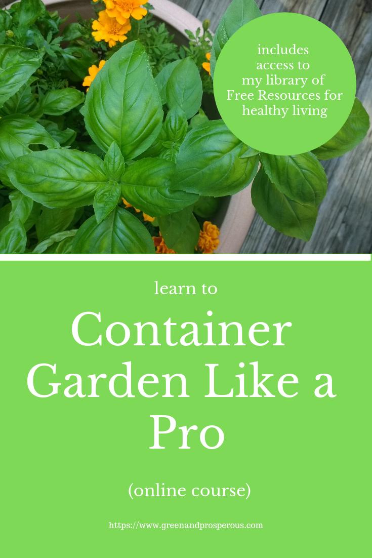 container gardening online course   Gardening for ...