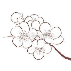Resultat De Recherche D Images Pour Fleurs Cerisier Dessin