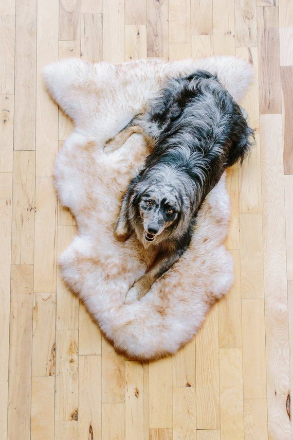 Sheepskin Rug Dog Bed Brown Tipped Australian