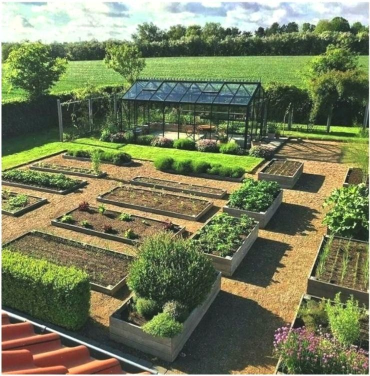Ideas Vegetable Garden for Beginners Rustic Vegetable Flower Pl  Anf Caution when watering only watering not drowning This brings us to the next point plants need enough...