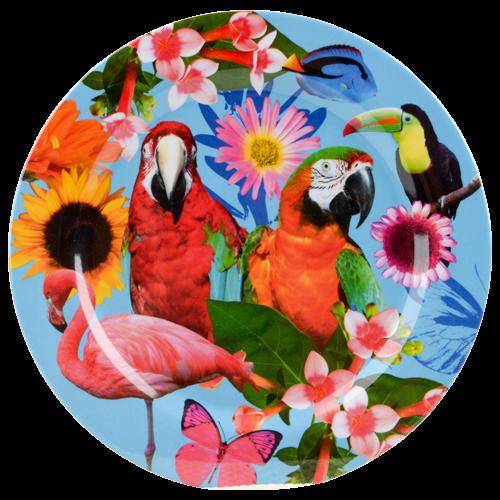 assiette+imprimé d'oiseau mél. 25cm dv.v - Conserver & Trier - Nettoyage & Ménage - Action France
