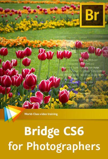 Video2Brain - Bridge CS6 for Photographers  http://tutdownload.com/all-tutorials/design/photoshop/video2brain-bridge-cs6-for-photographers/