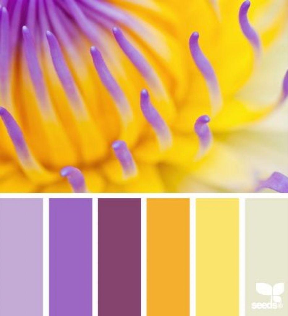 Цветовая палитра сочетания цветов Таблица сочетания
