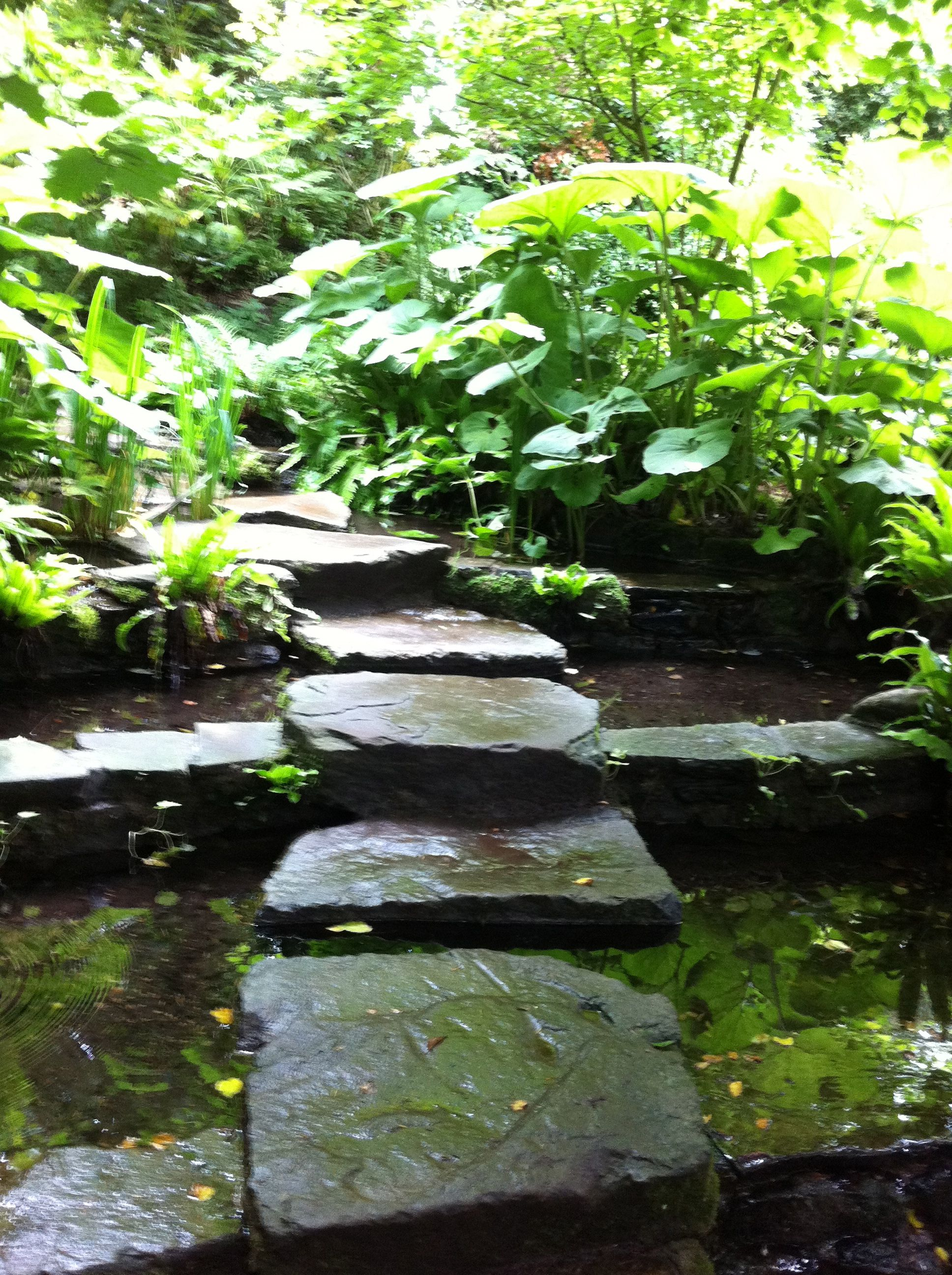 Japanese Gardens Pathway To