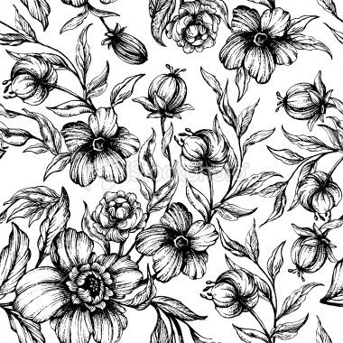Black And White Floral Pattern Flower Print Pattern Flower