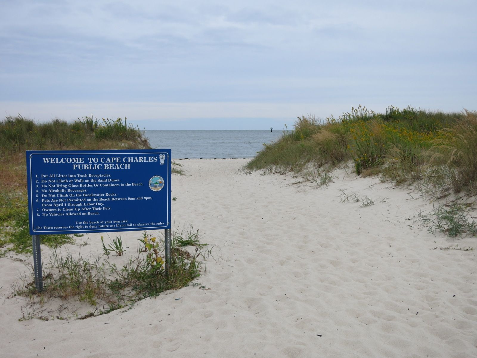 Chesapeake Bay Beach In Cape Charles Va