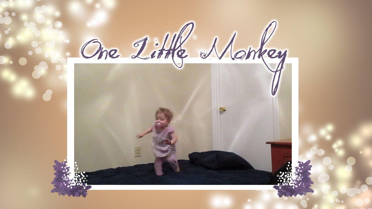 One Little Monkey 7/27/2015 (Day #349)