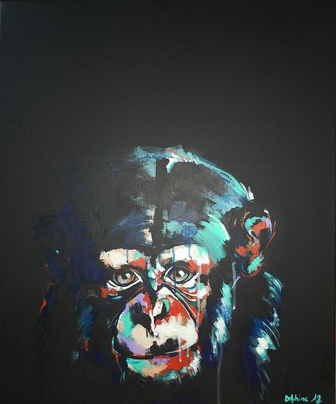 Chimpanz 10