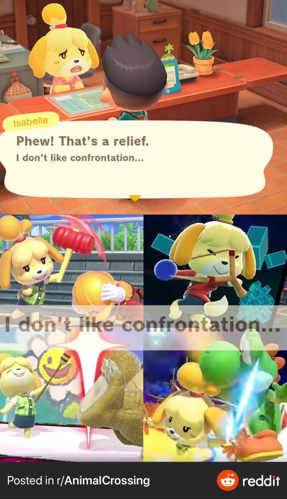 I Don T Like Confrontation Animal Crossing Funny Animal Crossing Memes Animal Crossing