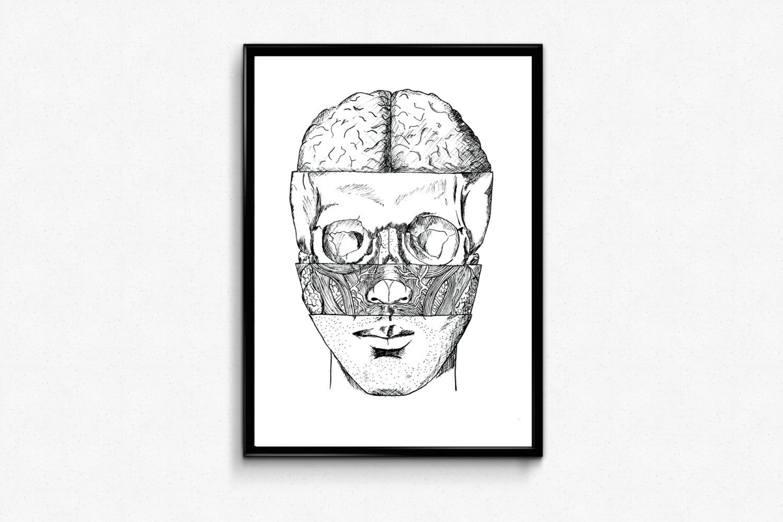 Human Anatomy Art Print - Human Skull Anatomy Poster - Ink Drawing ...