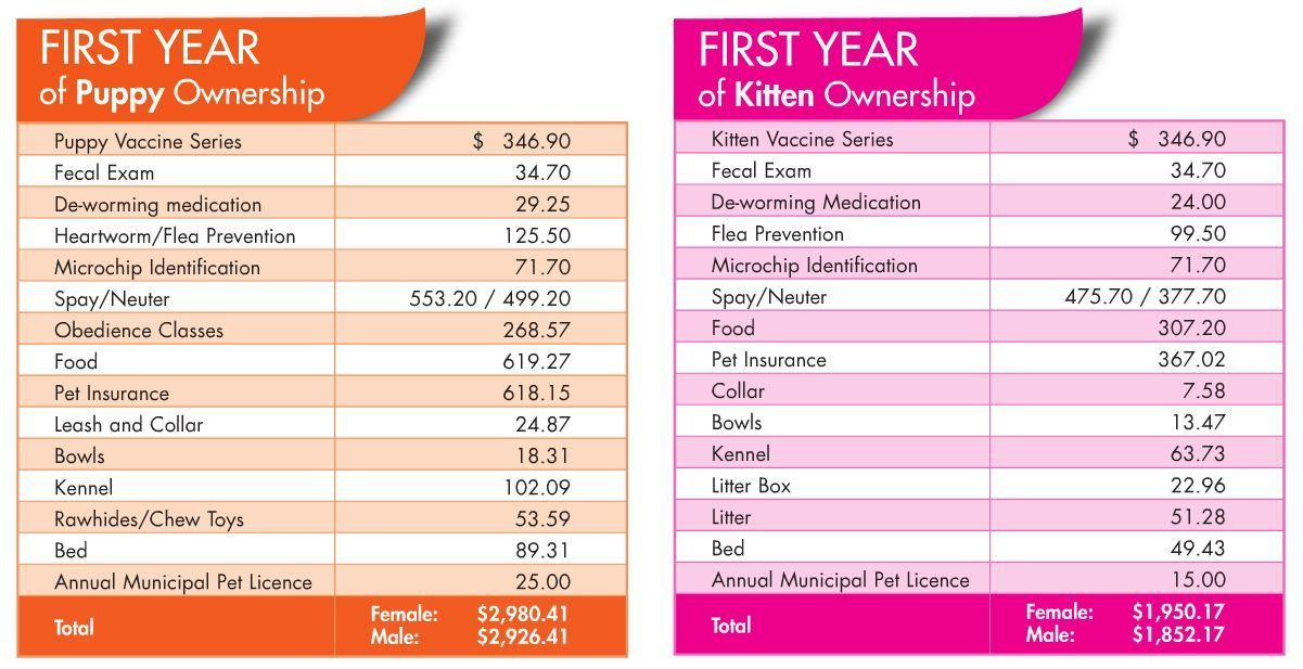How much does a dog cost per year