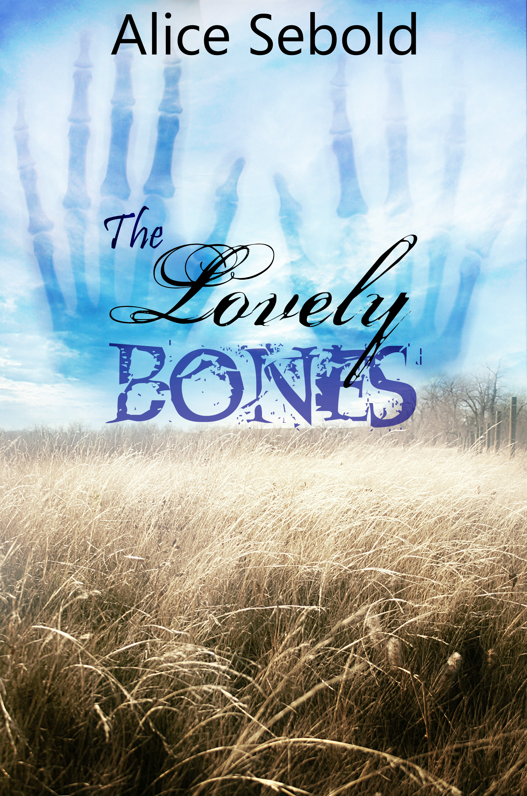 What are 5 major conflicts in The Lovely Bones by Alice Sebold?