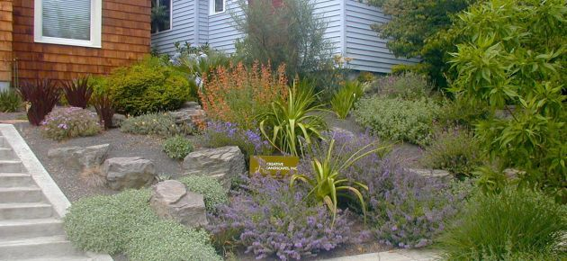 xeriscape eastern oregon landscaping - Google Search ...