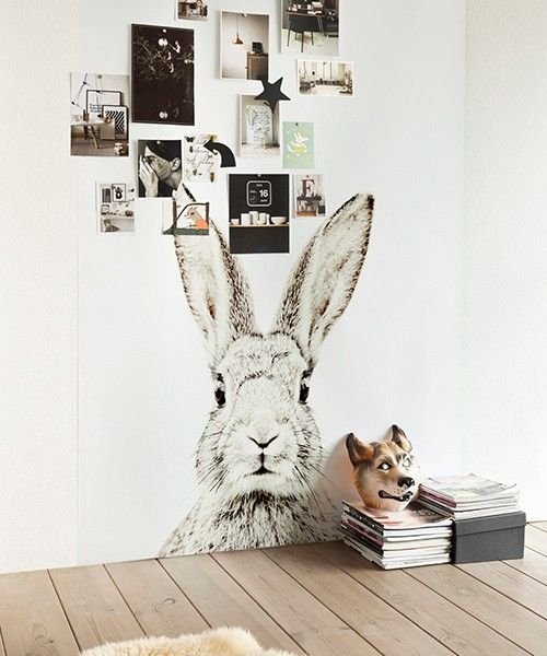 papier peint magn tique lapin groovy magnets la d co. Black Bedroom Furniture Sets. Home Design Ideas