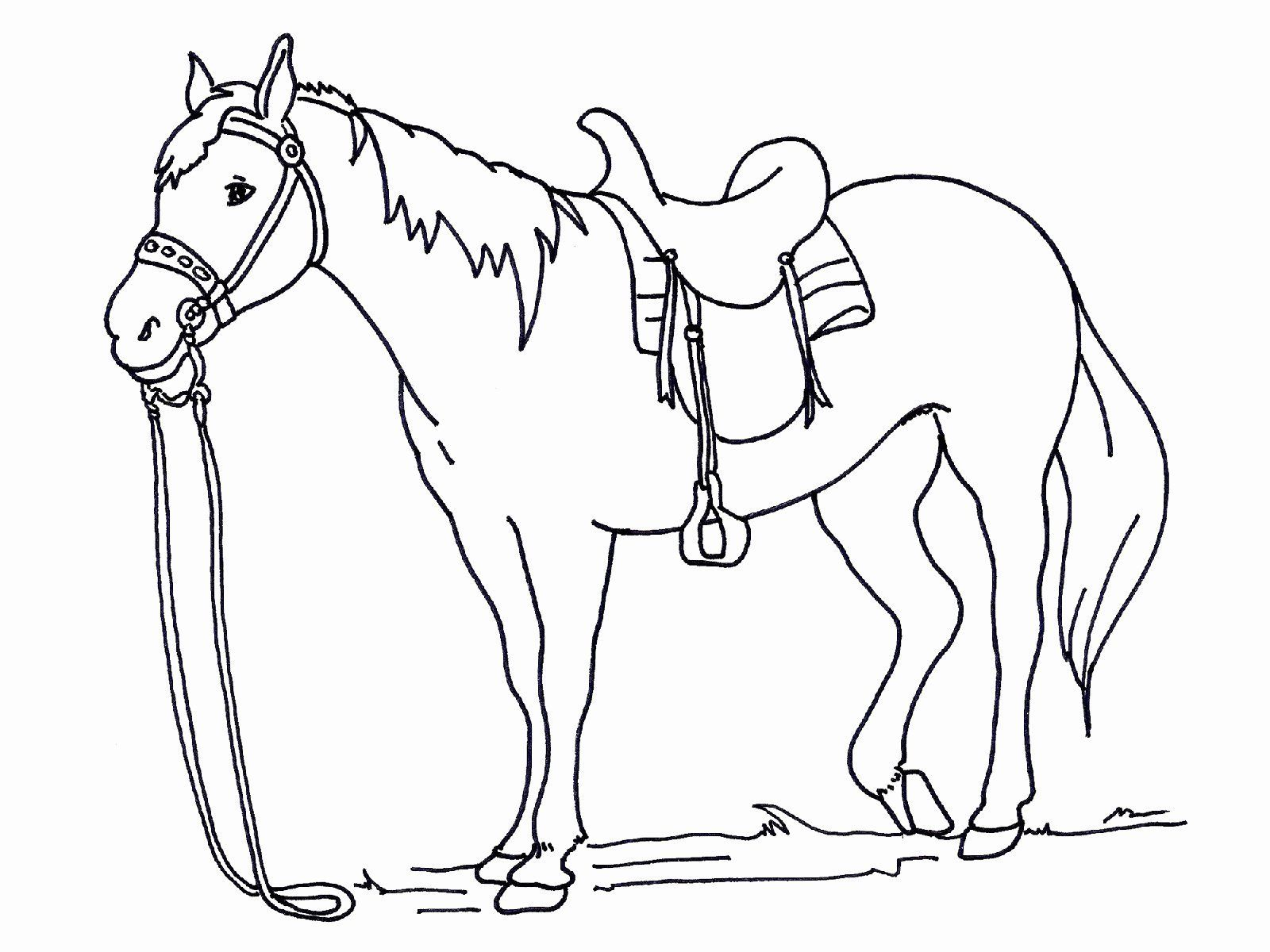Coloring Pages Of Horses Unique Free And Printable Horse Color Martin Chandra Coloring Pages In 2020 Horse Coloring Horse Coloring Pages Animal Coloring Pages