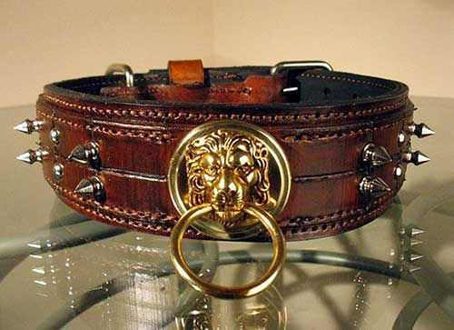 7ea954f8f51 The Dwynn collar, Collars by Oli, Handmade Latigo leather, Hand tooled  brass hardware, Saluki Station