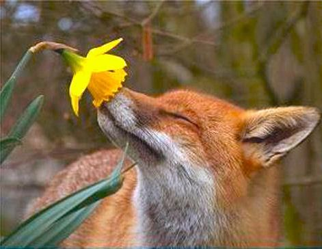 A reminder to stop once in a while in life just to smell the flowers.