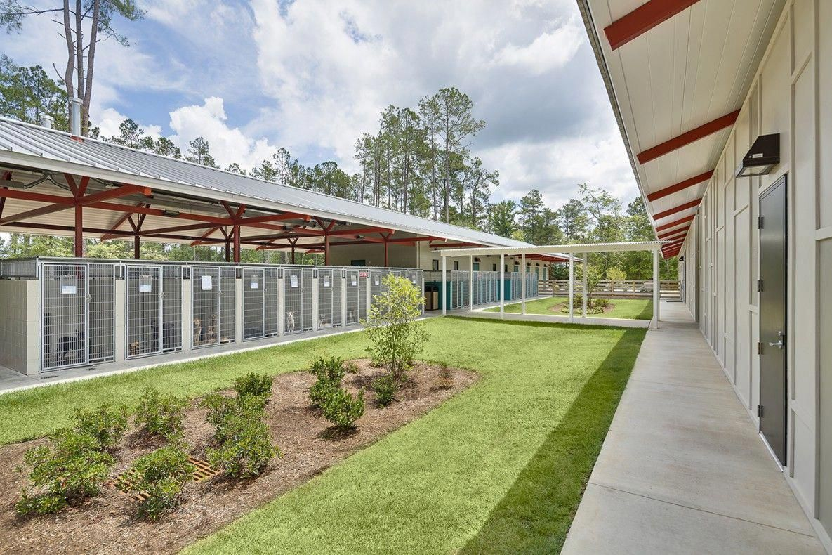Aiken Animal Shelter McMillan Pazdan Smith Architecture