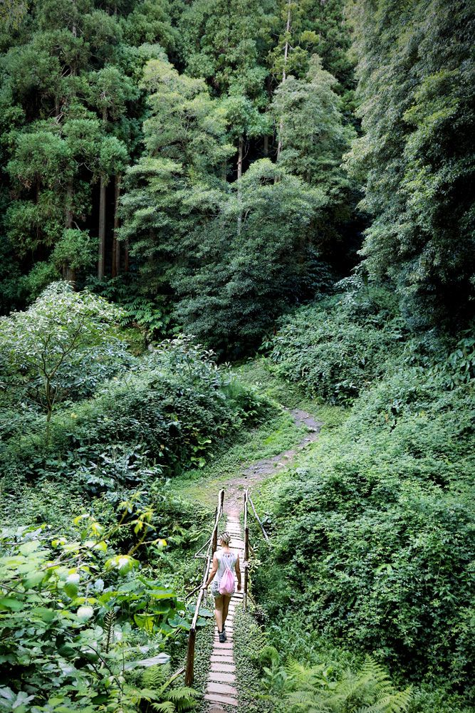 Photo of Hiking in the AZORES – my highlights on Sao Miguel