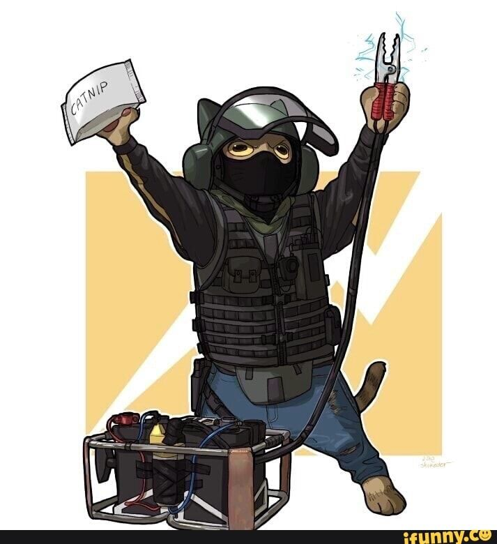 Found On With Images Rainbow Cat Rainbow Six Siege Memes