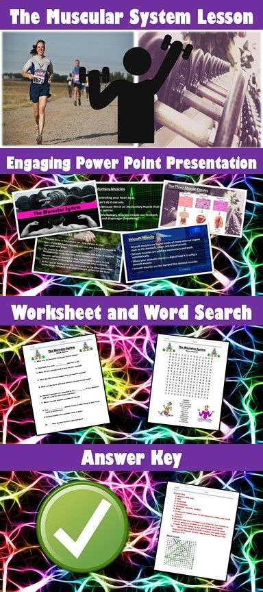 Theme, Types of Characters, Plot Structure PowerPoint + Notes BUNDLE