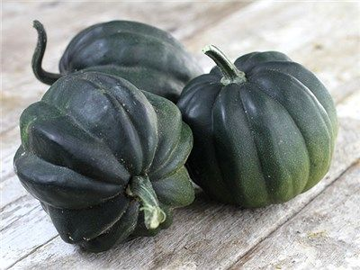 I Grow A Vine Or Two Of This Very Common Squash Every Year 400 x 300