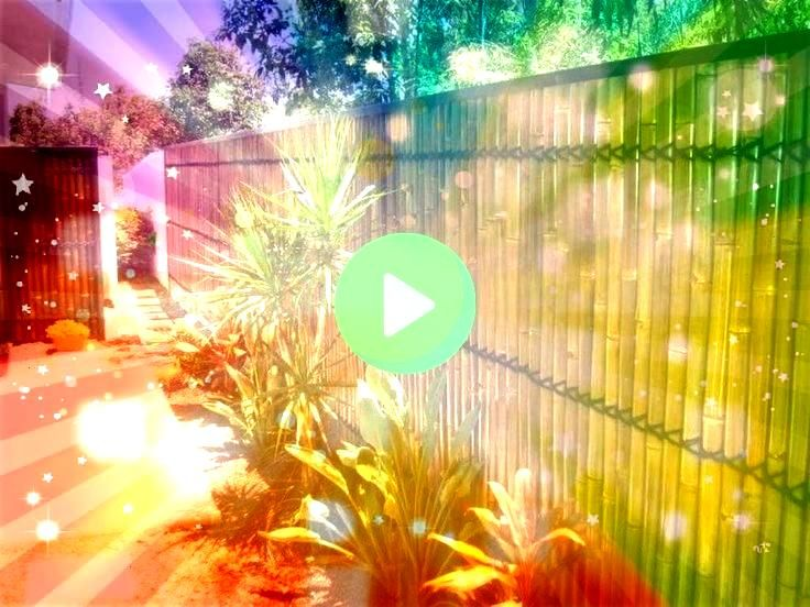 cheap backyard privacy fence design ideas 01 easy cheap backyard privacy fence design ideas 01 easy cheap backyard privacy fence design ideas Bamboo Fence  10 Creative Ba...