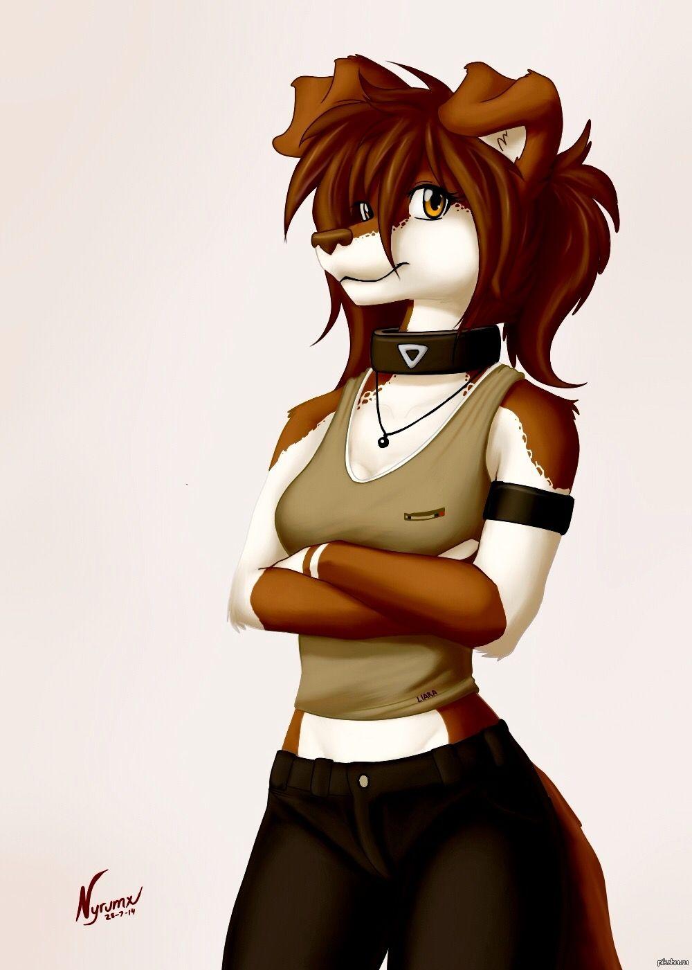 Furry fox yaoi hot girls wallpaper