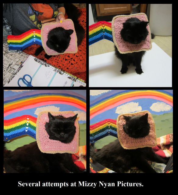 Nyan Cat Lovey Crochet Pattern Download | Etsy | 639x584